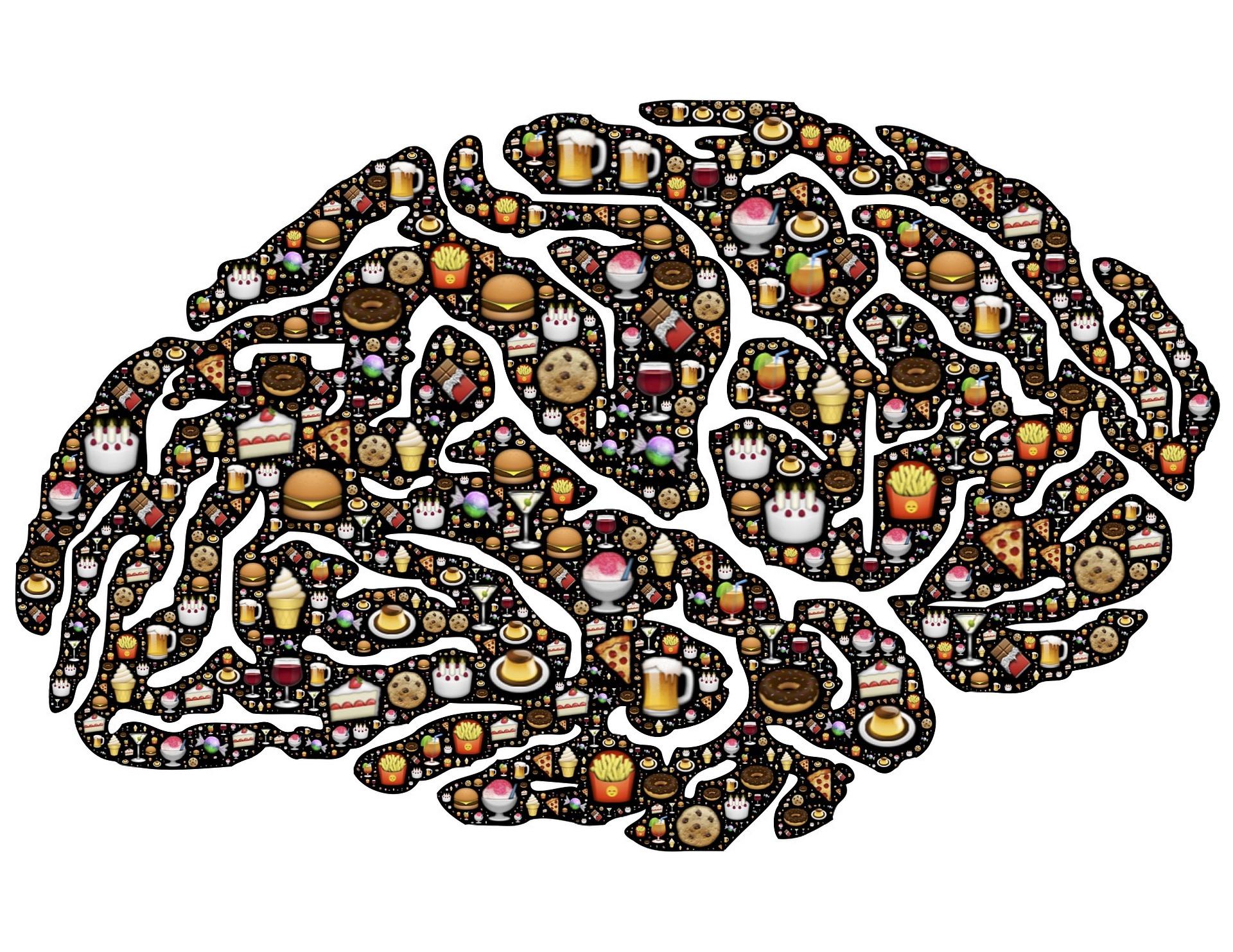 Smagen sidder i hjernen